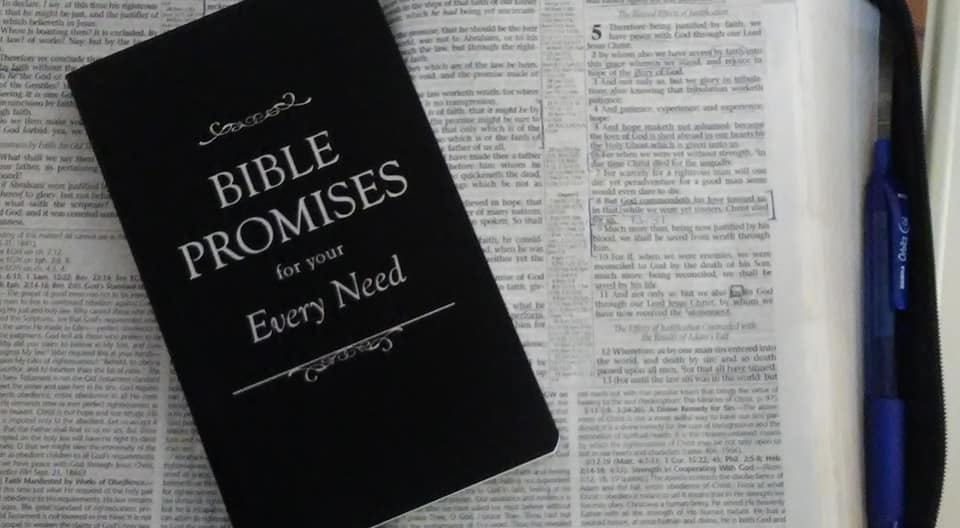 Mom's Bible and the book Bible Promises for your Every need